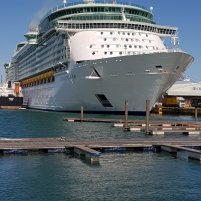 Independence of the Seas in Southampton